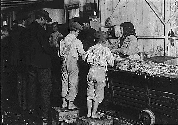 an introduction to the history of child labor 1 understanding childhood: an introduction to some key temporary scholars of childhood such as child labour provide us with a rich social history.